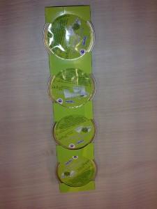 brokkoli krém