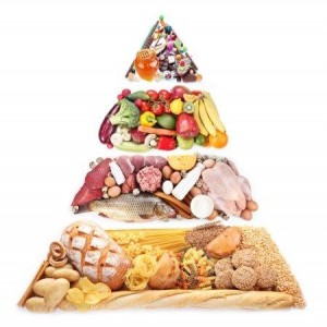 taplalkozási piramis