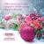 Kellemes Karácsonyt és Boldog Új Évet kíván a DiétABC